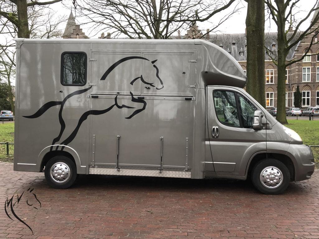 Paardenwagen foto 11