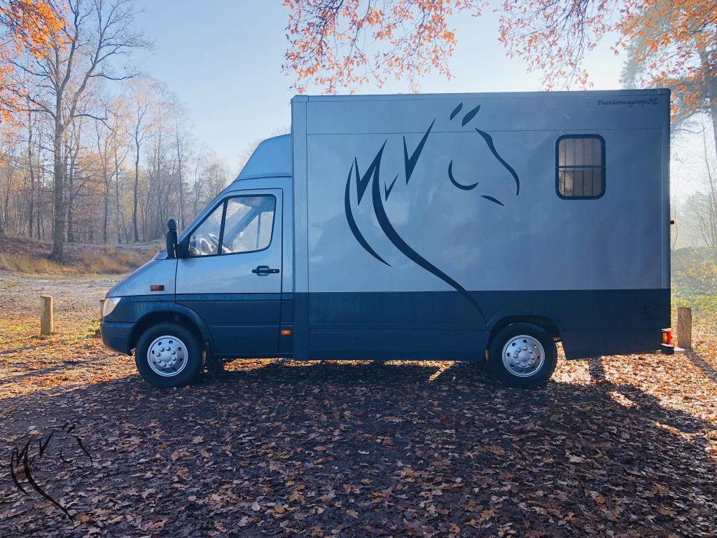 Paardenwagen foto 2