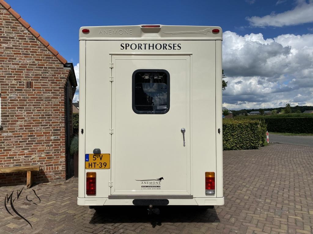 Paardenwagen foto 3
